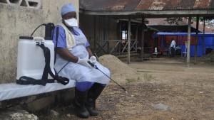 The World Bank estimates the three countries hardest-hit by Ebola will lose $1.6bn in economic output this year.