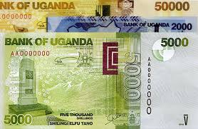 Shilling borrowing rates tend to edge up as election related spending dries up liquidity