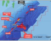 Ophir seeks partners for Equatorial Guinea Fortuna FLNG project